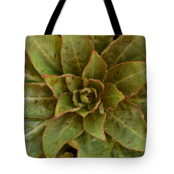 Leaf Star Tote Bag