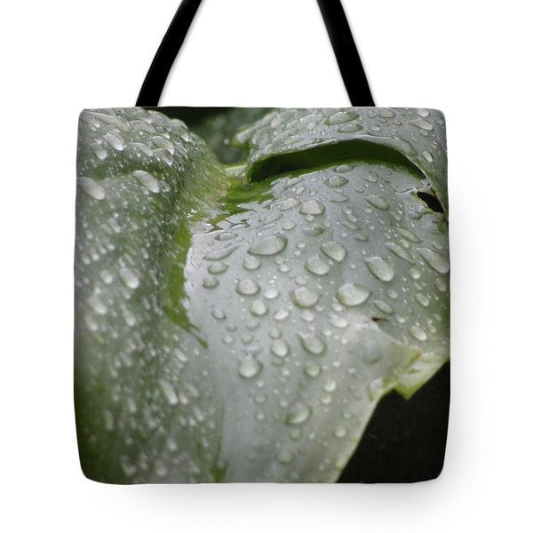 Tote Bag featuring the photograph Leafy Greens by Tiffany Erdman
