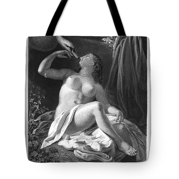 Leda And The Swan Tote Bag by Granger