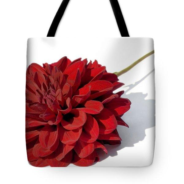Leggy Dahlia  Tote Bag by Susan Smith