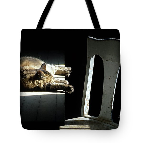 Let Sleeping Cats Lie Tote Bag by Bob Christopher