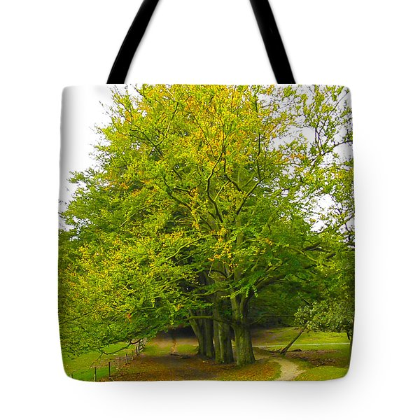 Lets Take A Seat Here Tote Bag by Go Van Kampen