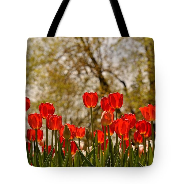 Liberation Tote Bag