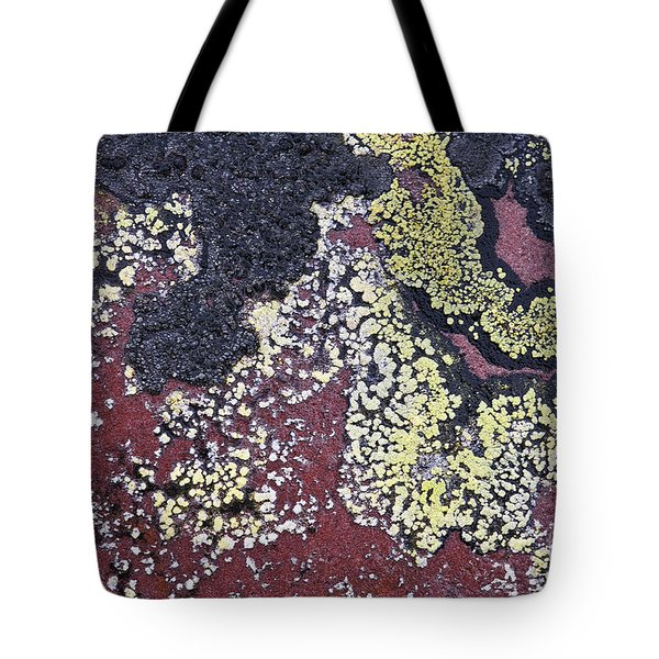 Lichen Pattern Series - 25 Tote Bag by Heiko Koehrer-Wagner