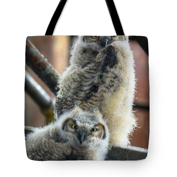 Life After People Tote Bag by Lori Deiter
