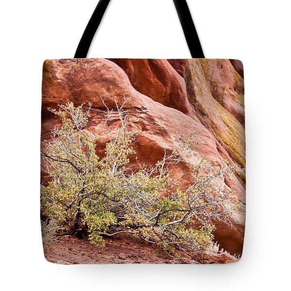 Life At Red Rocks Tote Bag