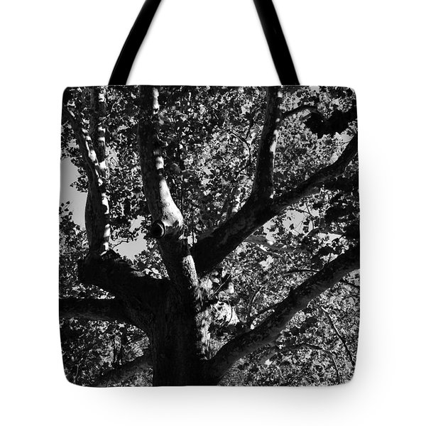 Light And Dark Tote Bag