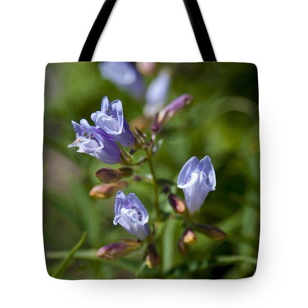 Light Purple Wild Penstemons  Tote Bag by Paul Cannon
