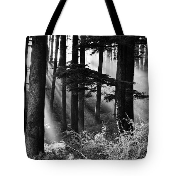 Tote Bag featuring the photograph Light Through The Trees by Don Schwartz