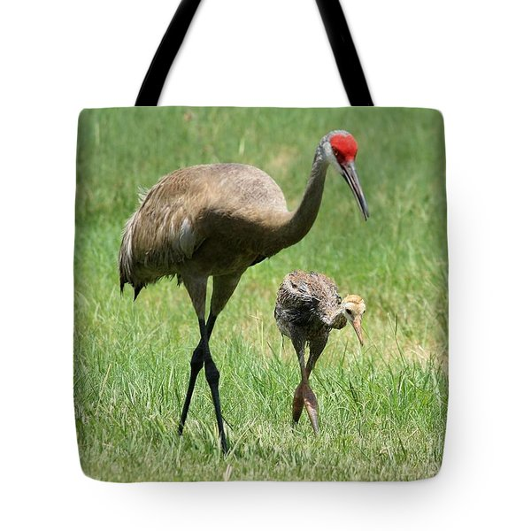 Like Father Tote Bag by Carol Groenen
