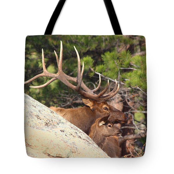 Like Father - Like Son Tote Bag by Shane Bechler