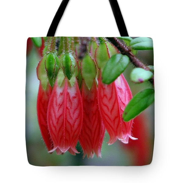 Tote Bag featuring the photograph Like Little Chinese Lanterns by Chris Anderson