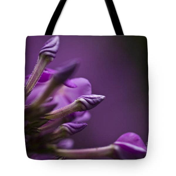 Lilac Spirals. Tote Bag by Clare Bambers