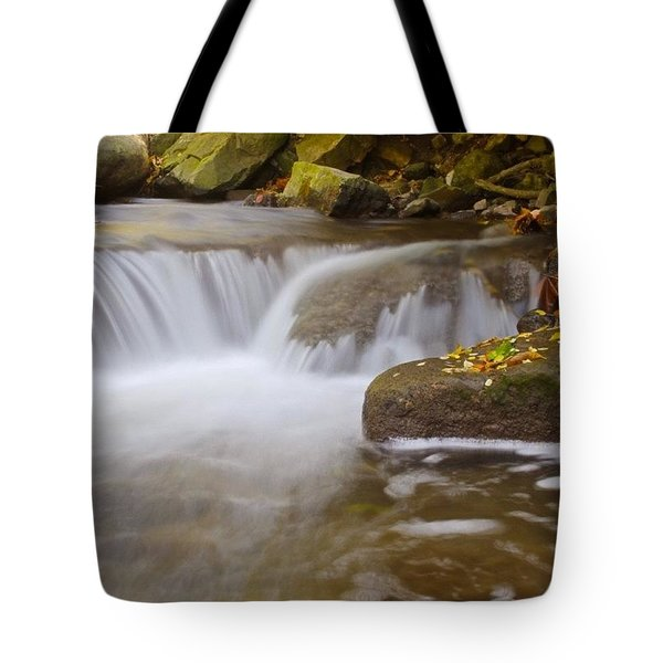 Linear Park Tote Bag