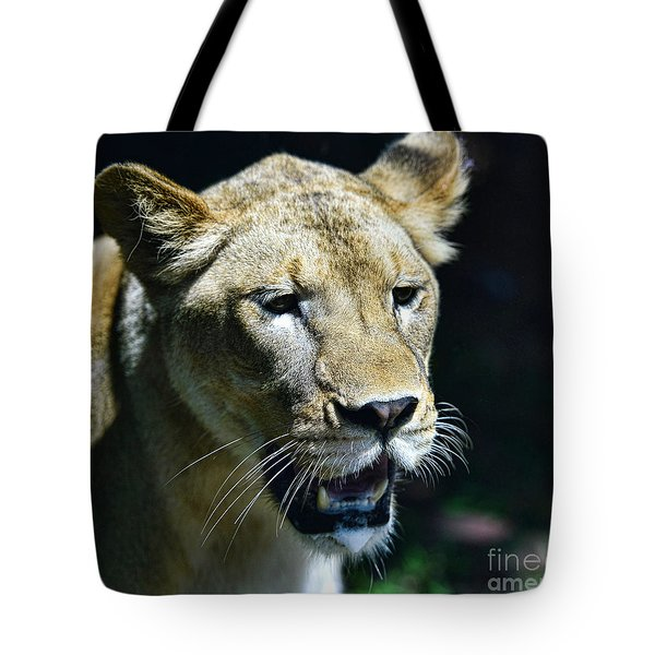 Lion - Endangered Species - Wildlife Tote Bag by Paul Ward
