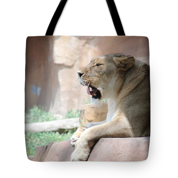 Lion At Brookfield Zoo In Chicago Il Tote Bag