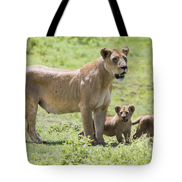 Lioness With Cubs Tote Bag by Carson Ganci