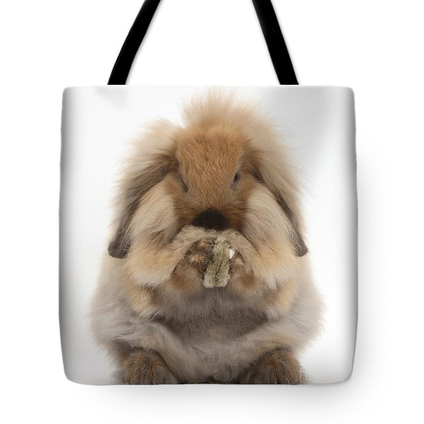 Lionhead X Lop Rabbit Grooming Tote Bag by Mark Taylor