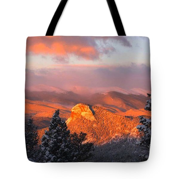 Tote Bag featuring the photograph Lion's Head II by Angelique Olin