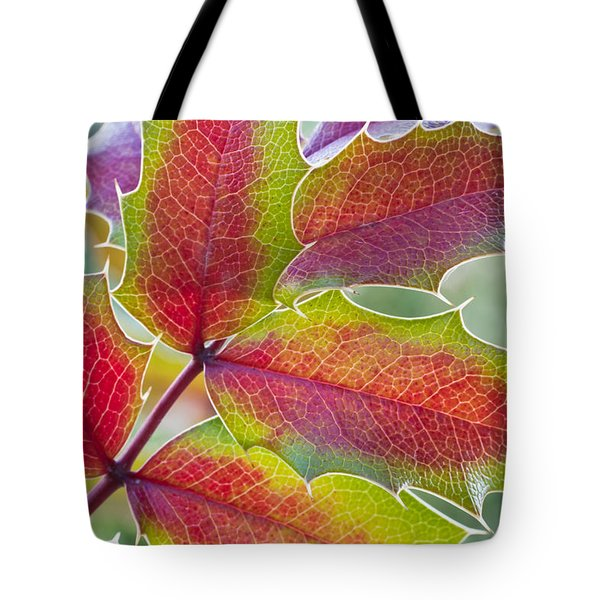 Little Bit Of Autumn Tote Bag