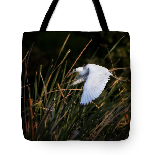 Little Blue Heron Before The Change To Blue Tote Bag by Steven Sparks