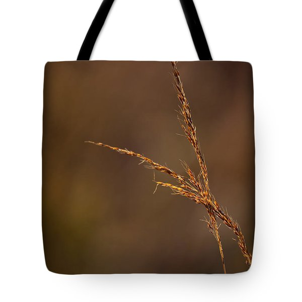 Little Bluestem On The Prairie Tote Bag