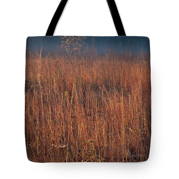 Little Bluestem Prairie Grass Tote Bag