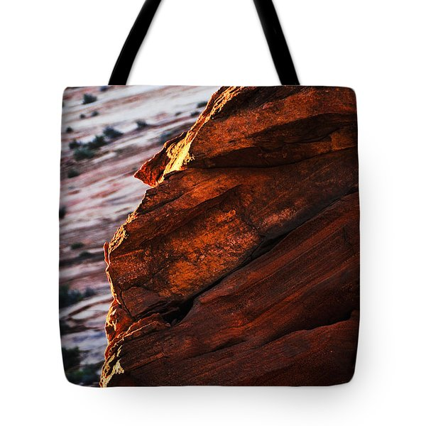 Little Brother Tote Bag by Skip Hunt