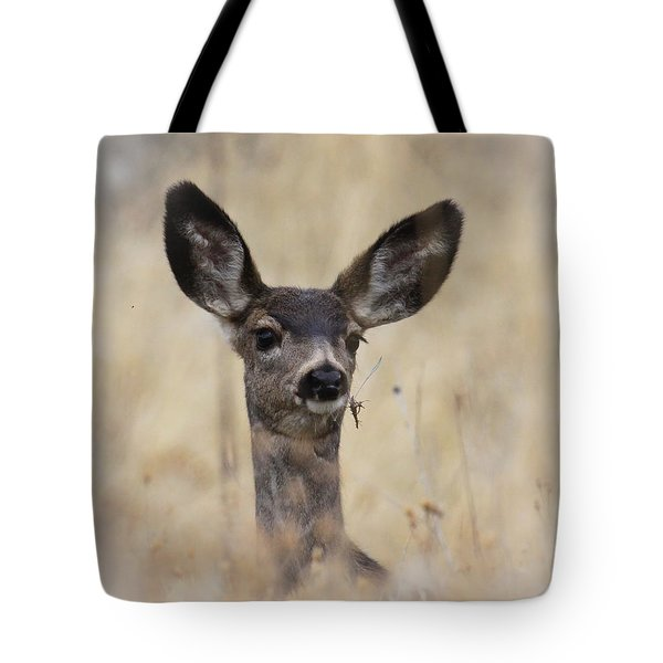 Tote Bag featuring the photograph Little Fawn by Steve McKinzie