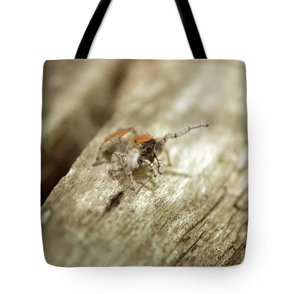 Tote Bag featuring the photograph Little Jumper In Sepia by JD Grimes