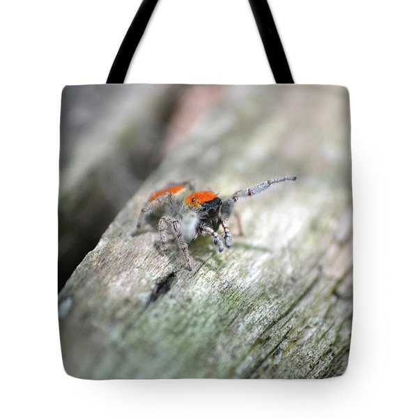 Little Jumper Tote Bag