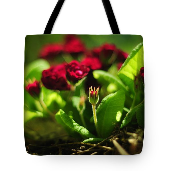 Little Prince Tote Bag by Rebecca Sherman
