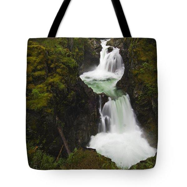 Little Qualicum Falls Provincial Park Tote Bag by Mike Grandmailson