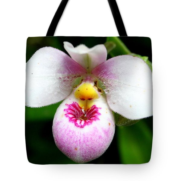 Little White And Pink Orchid Tote Bag