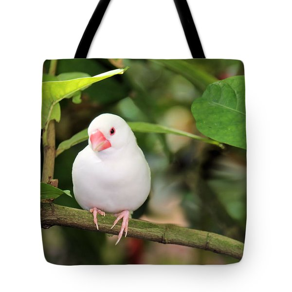 Little White Bird Tote Bag by Rosalie Scanlon