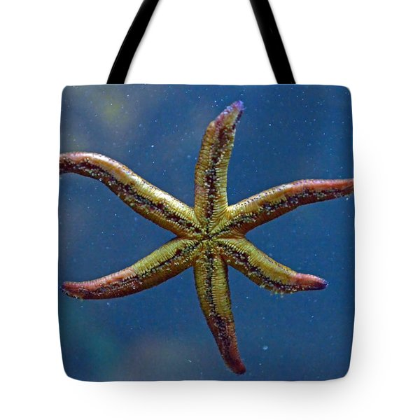 Live Starfish Tote Bag by Sandi OReilly