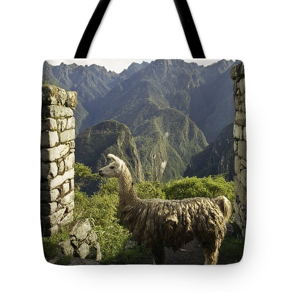 Llama On The Inca Trail Tote Bag by Darcy Michaelchuk