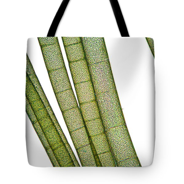 Lm Of Tubular Algae Tote Bag by Raul Gonzalez Perez