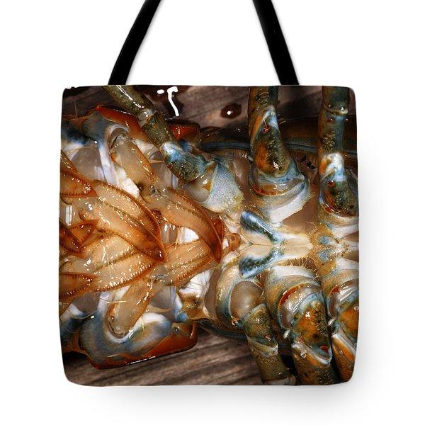 Lobster Female Sex Organs Tote Bag by Ted Kinsman