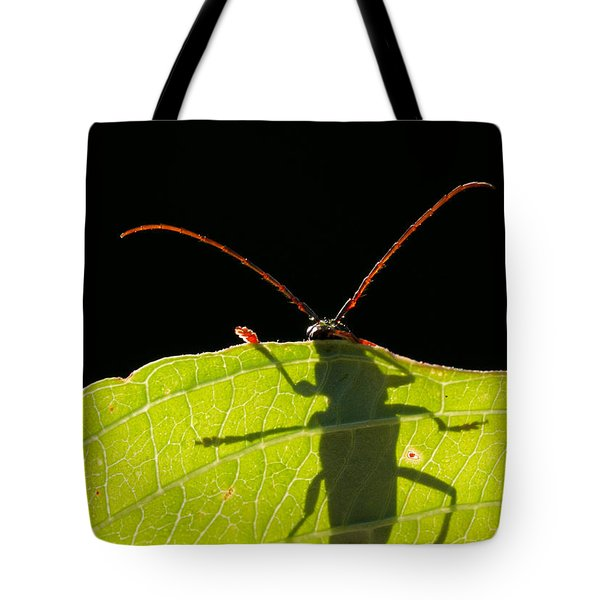Locust Borer Tote Bag by Mircea Costina Photography