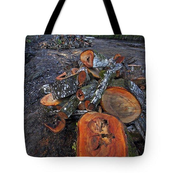 Logged Red Mangrove Rhizophora Mangle  Tote Bag