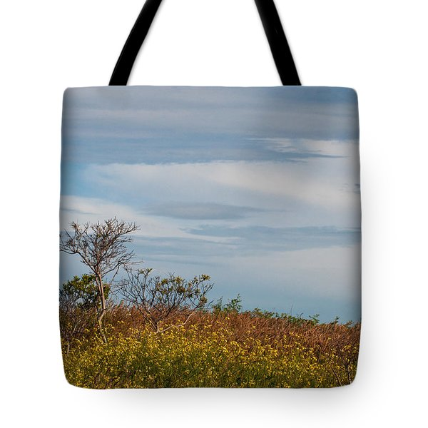 Tote Bag featuring the photograph Lone Tree On The Rhode Island Coast by Nancy De Flon