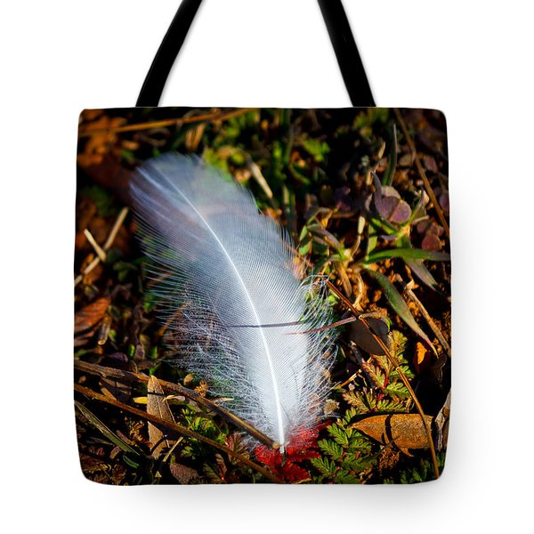 Lonely Feather Tote Bag by Doug Long