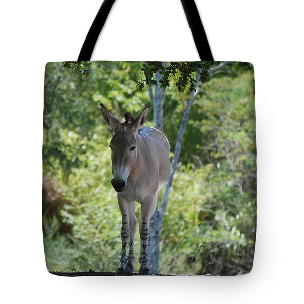 Lonely Tote Bag by Rob Hans