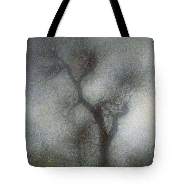 Lonesome Tote Bag by Diane Dugas