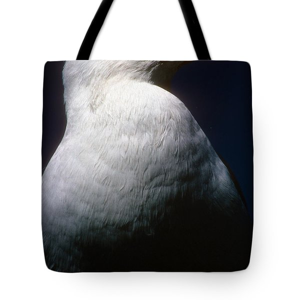 Long Island Seagull Tote Bag