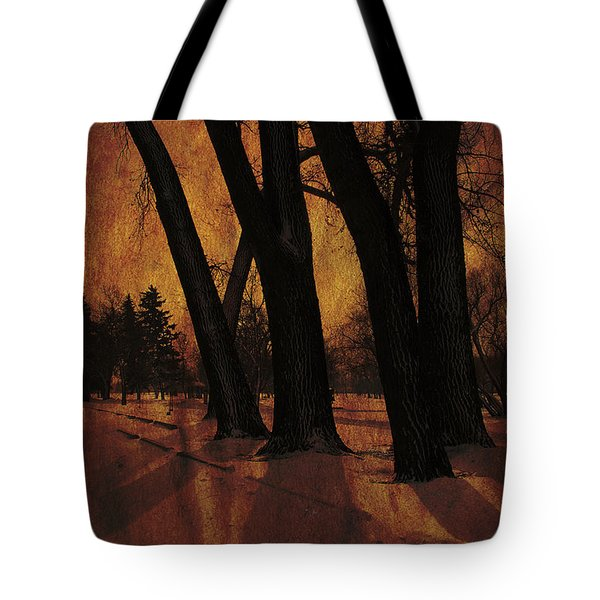 Long Shadows Tote Bag by Alyce Taylor