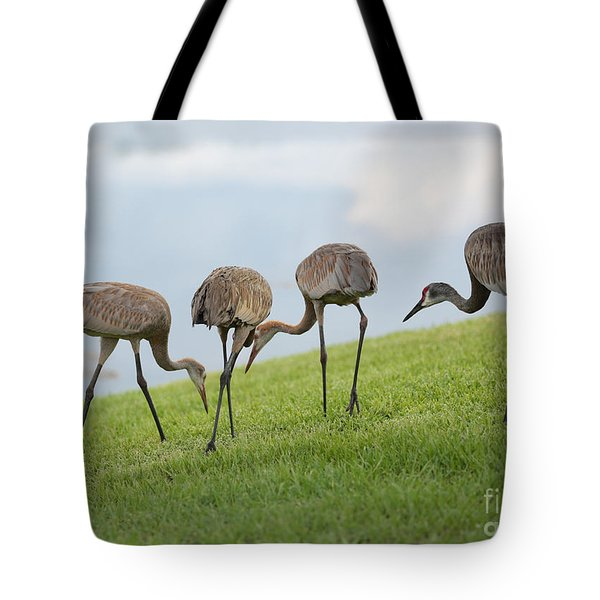 Look What I Found Tote Bag by Carol Groenen