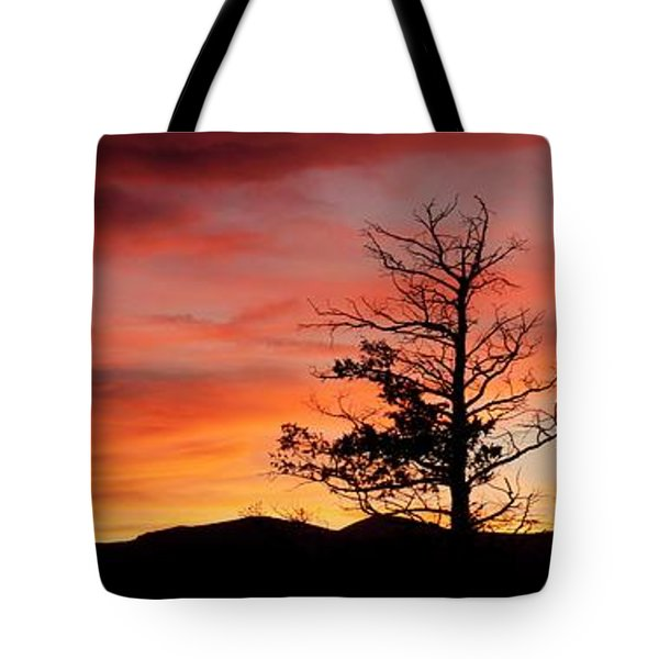 Tote Bag featuring the photograph Lookin' Out My Front Door by Angelique Olin
