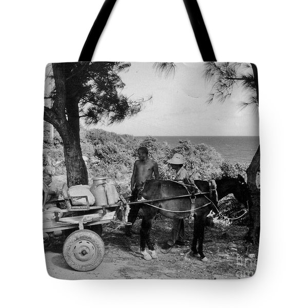 Looking Back Tote Bag by John Malone